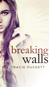 cropped-breaking-walls_ebook.jpg